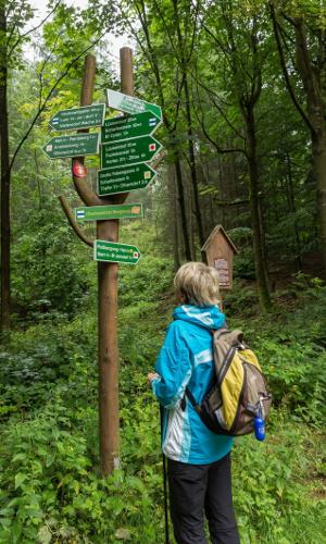 bild 1b Oberlausitzer Bergweg
