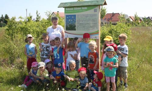 """canon eos juni2013 258 """"Dufte Bienen"""" – Bienenschutz in Naturparken"""