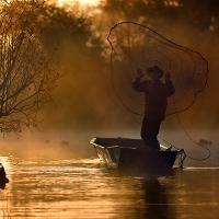 der-rheinfischer-Beitragsfoto