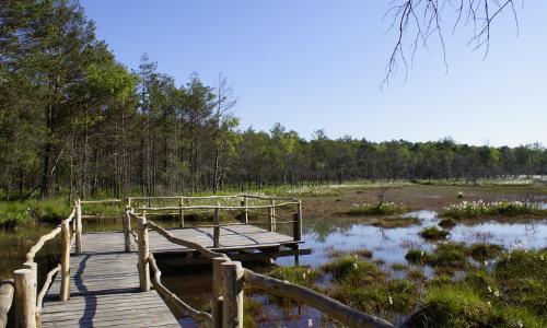 dsc6380 verkleinert Auf guten Wegen   Erlebnispfade in Naturparken