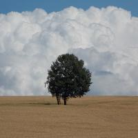 'Himmel und Erde' Copyright: VDN/Ralf Köhler