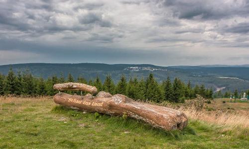 ein Stück Thüringen VDN Petra Küsterb Thüringer Wald