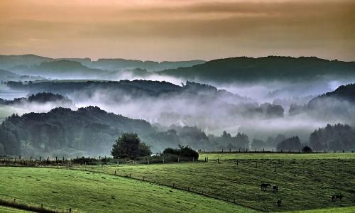 "es wird herbst erster morgennebel ber den auen Rolf Wengenroth ""Buckelige"" Welt – Naturpark Bergisches Land"