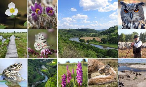 """header Natura 2000 neu beitrag Fachtagung """"Vielfalt leben"""""""