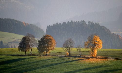 img 1267bs beitrag Neuer Stern im Sauerland – Naturpark Sauerland Rothaargebirge