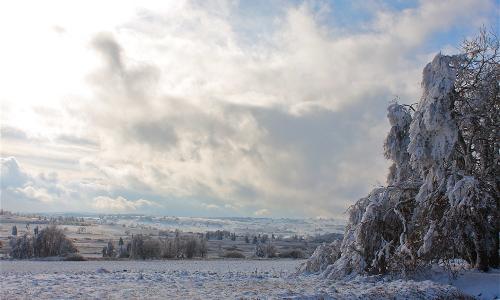 img 6618 beitrag Stille Zeit – Winter erleben in Naturparken