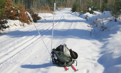 img 7556bb Winterliches Wandervergnügen!