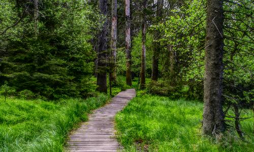 imgp7402 npb Naturpark Wandertag 2019