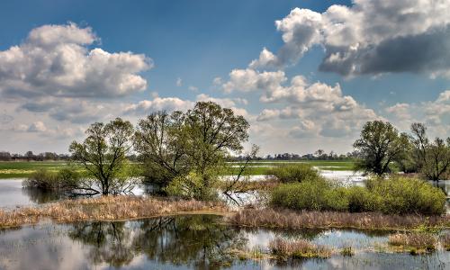 landschaft001 p barnim 6406b Naturpark Barnim – Zwei Länder – ein Park