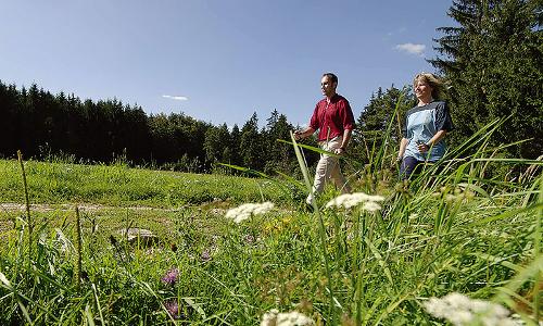 nordicwalking altmühltal. beitrag Gesund   Mit der Vielfalt der Natur