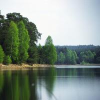 Heidesee - Copyright: Naturpark Dahme-Heidessen/Naturwacht