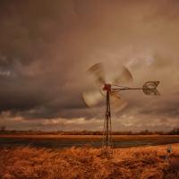 """""""Wind aus Nord-West"""" © VDN/Martin Goosmann"""