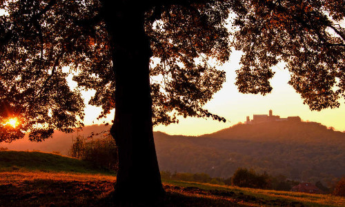 panoramablick2b Blick auf die Wartburg bei Sonnenuntergang VDN kwerblick Thüringer Wald