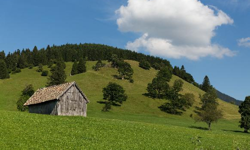 preview Wiesmahd 08082016 045 AntonBrey 9192e2db4cb Naturpark Ammergauer Alpen