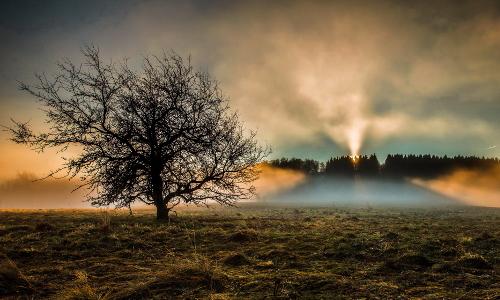 sonne nebel hochrhn 42b Naturpark Bayerische Rhön