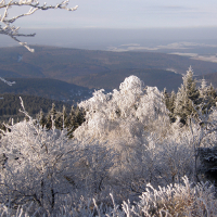 Winterzauber © VDN / Hilke Steinecke