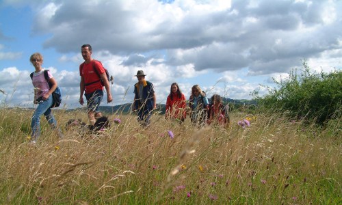 wanderer164 Beitrag Einer Vision Raum geben   Naturpark Lahn Dill Bergland