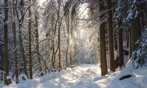 winterwanderung im idyllischen waldnaabtal beitrag Stille Zeit – Winter erleben in Naturparken
