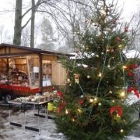 Weihnachten im Arboretum (Roland Protz)