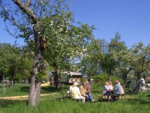 Blütenfest (NABU RV Westhavelland e.V.)