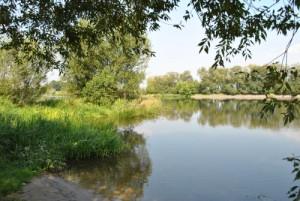 Havel im Sommer (Naturpark Westhavelland)
