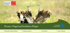 Internetstartseite (Claudia Hesse)