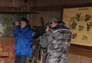 Vogelbeobachtung am Gülper See (NABU Regionalverband Westhavelland e.V.)