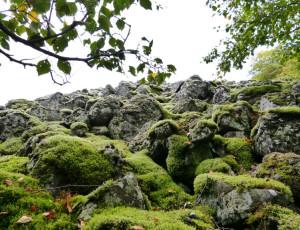 Basaltblockhalde